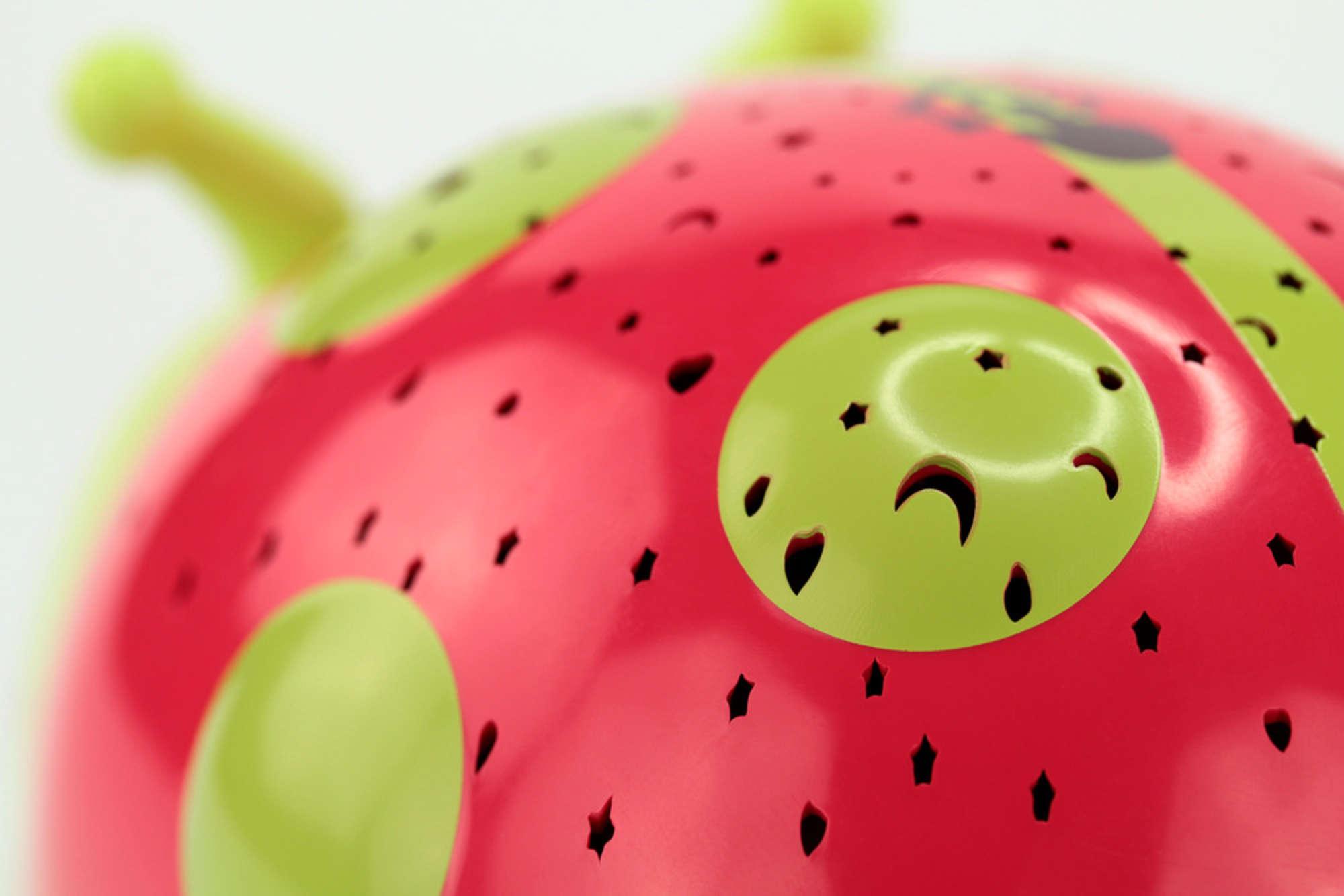Ladybird starlight