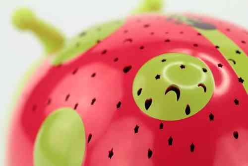 1800-0061_Starlight-Ladybird_bu_11