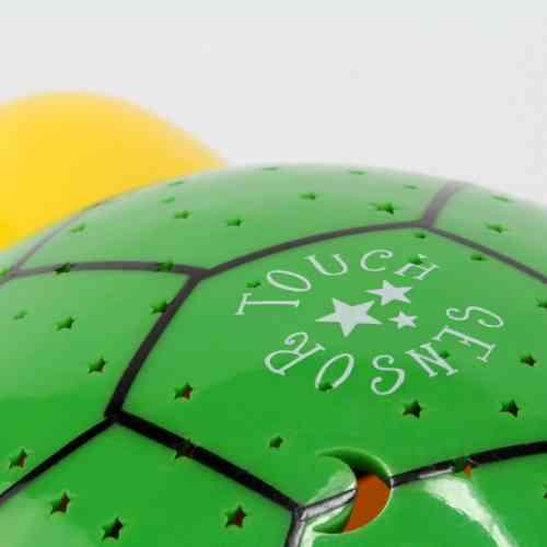 Starlight-Turtle_bu_4